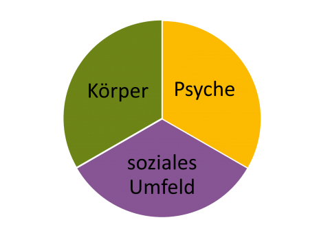 TortendiagrammGesundheit mit den Aspekten Körper, Psyche und soziales Umfeld